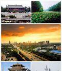 济宁市企业/个人网站注销备案  注销 鲁ICP备*******号